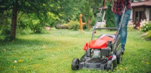 lawn care professional